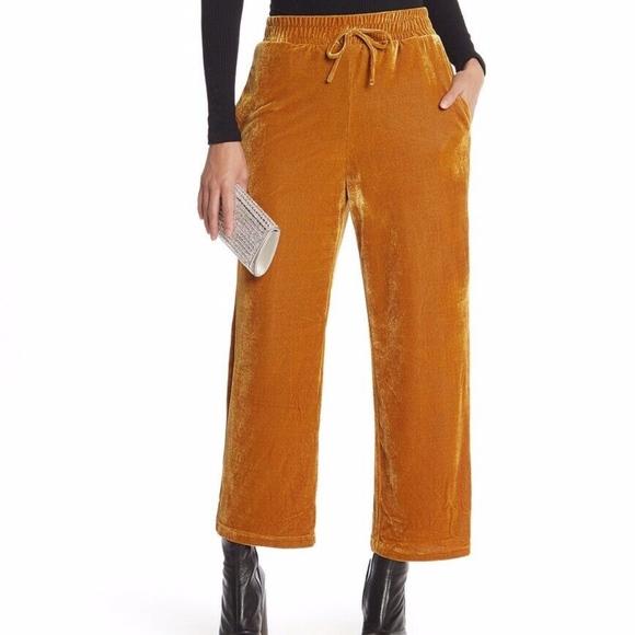 Elodie Pants - Elodie all sizes gold velvet stretch elastic waist